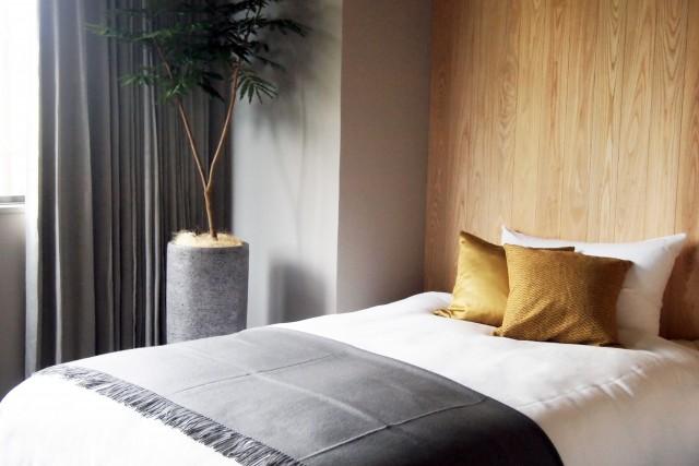 New room 302 standard room OPEN
