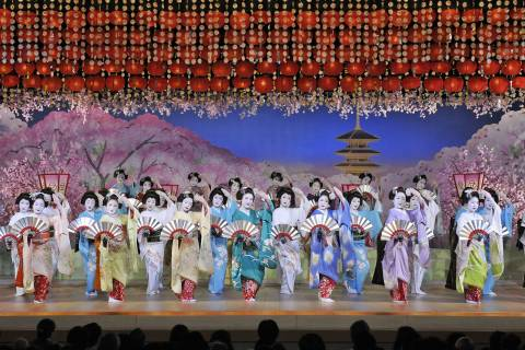 spring is here,,spring dances by Geiko and Maiko